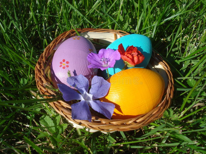Wicker basket with colorful Easter eggs and spring flowers. Easter arrangement with colorful eggs and spring blossoms in wicker basket on grass stock images