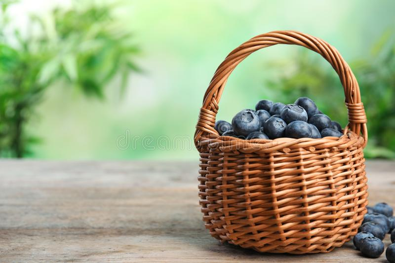 Wicker basket with fresh blueberries on table against blurred green background, space for text royalty free stock photography