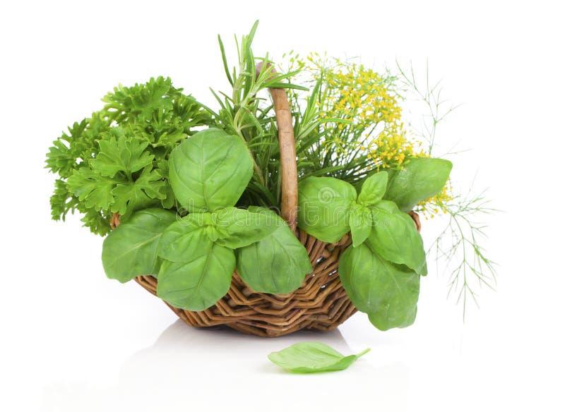 Wicker basket with fresh herbs stock photo