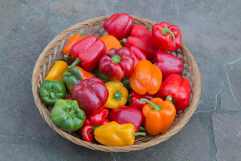Wicker basket with fresh peppers in various colors stock photo