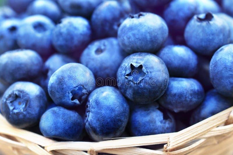 Wicker basket of fresh ripe sweet juicy blueberries stock photo