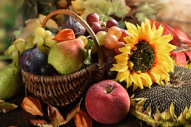Wicker basket full of autumn fruits royalty free stock photo