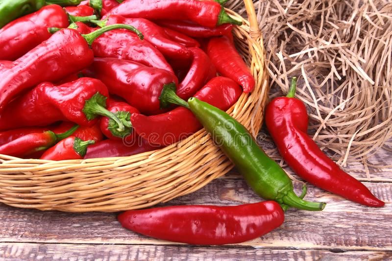 Wicker basket full of fresh red chili peppers. stock photos