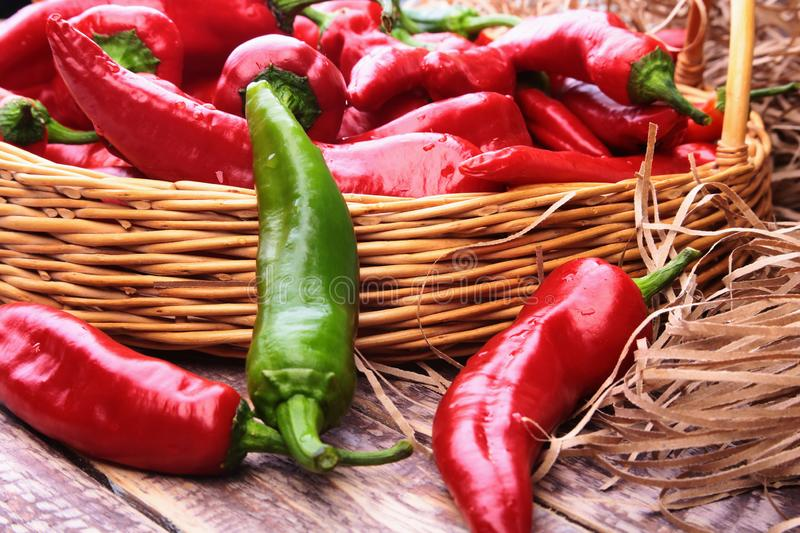 Wicker basket full of fresh red chili peppers. royalty free stock images
