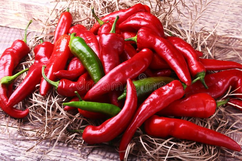 Wicker basket full of fresh red chili peppers. stock image