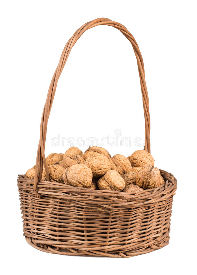 Wicker basket with walnuts. Isolated on a white background royalty free stock photos