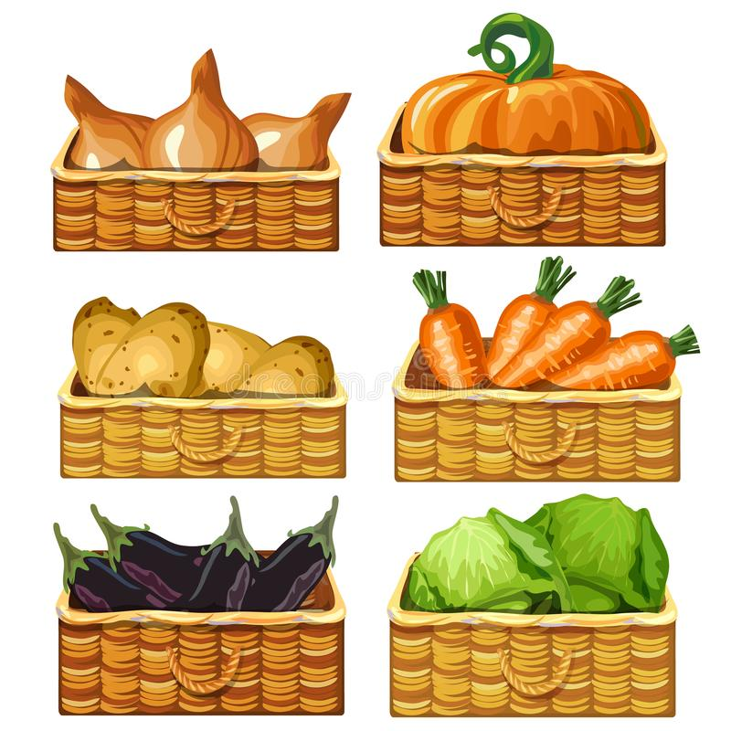 Free Wicker Baskets For Storing Vegetables. Potatoes, Zucchini, Pumpkin, Cabbage, Carrot, Onions. Products In Storage. Vector Royalty Free Stock Photography - 104382287