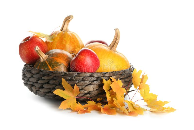 Wicker bowl with fresh pumpkins, apples and autumn leaves on white background royalty free stock image