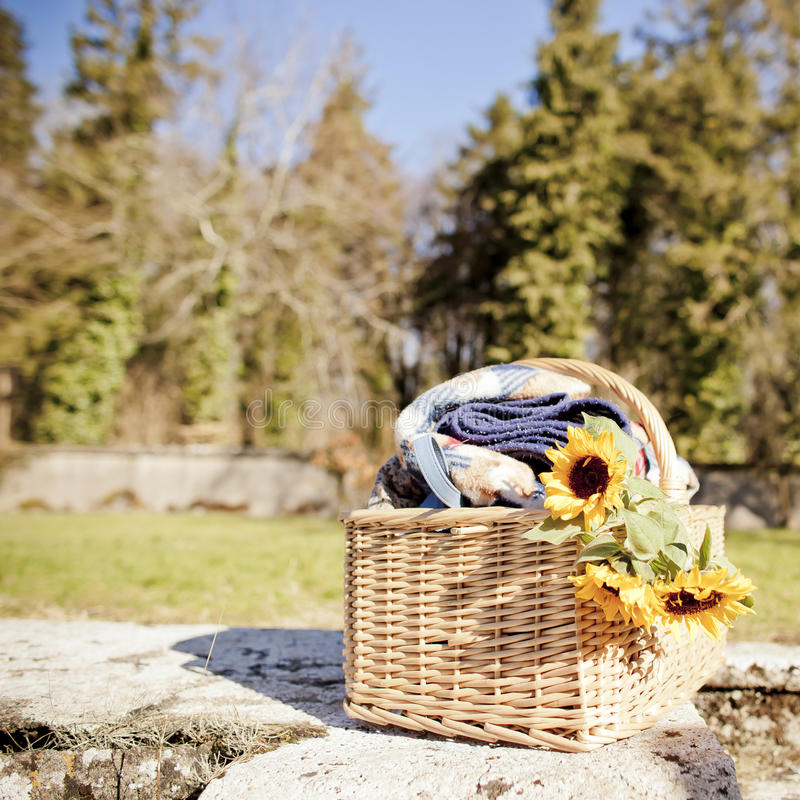 Picnic caddy. Wicker picnic caddy with blanket and sunflowers outside on a sunny day stock photos