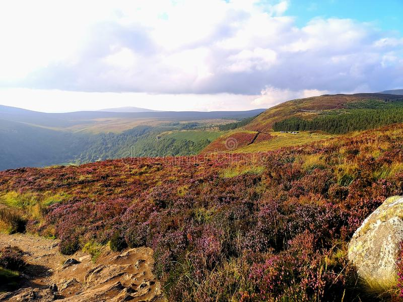 Wicklow Mountains, Ireland, beautiful nature, Vikings land, sunny Summer royalty free stock photo