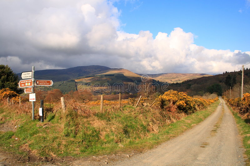 The wicklow Way stock image
