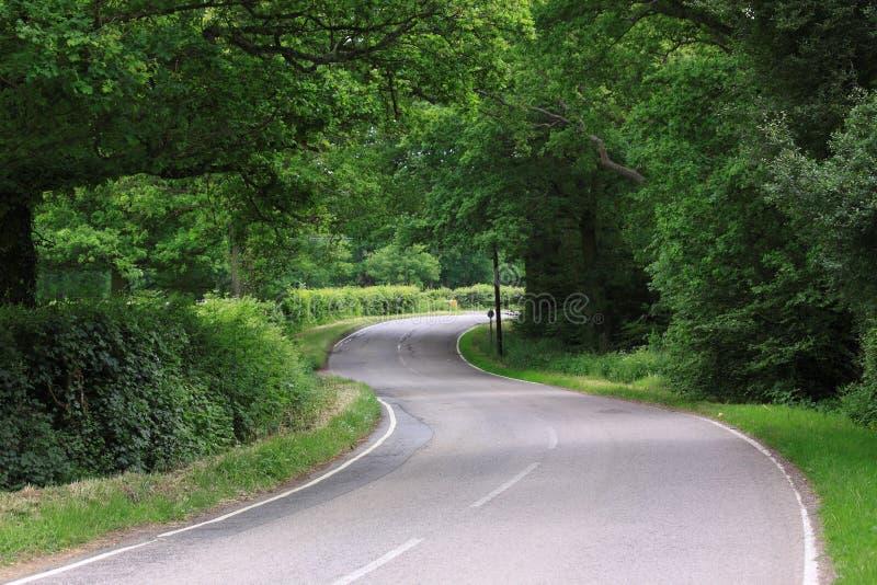 Wicklung-Land-Straße England stockfoto
