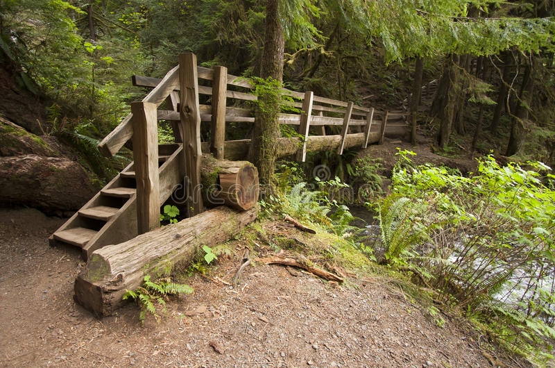 Download Wide Angle Photo Of Wooden Nature Bridge End Near Marymere Falls, Olympic National Park Stock Photo - Image: 30952262