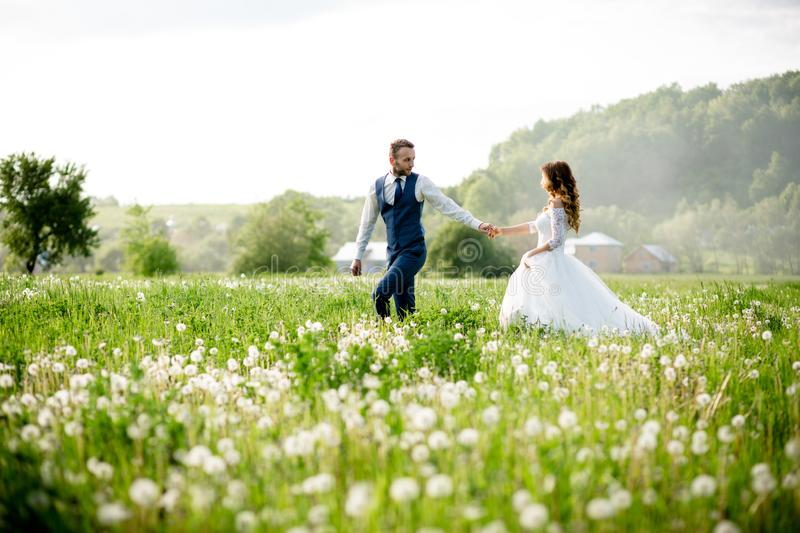 Wide angle shot of a bridal couple standing on a white flowering meadow stock photography