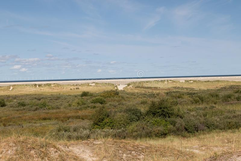 Wide angle view on the nature of the northern sea island borkum in germany with deep blue sky royalty free stock images