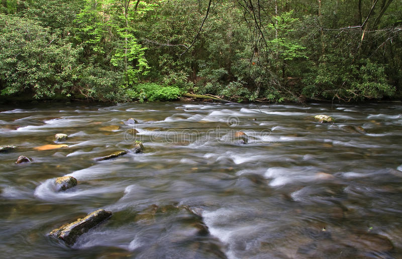 Download Wide Creek And Spring Growth Stock Image - Image: 30565631
