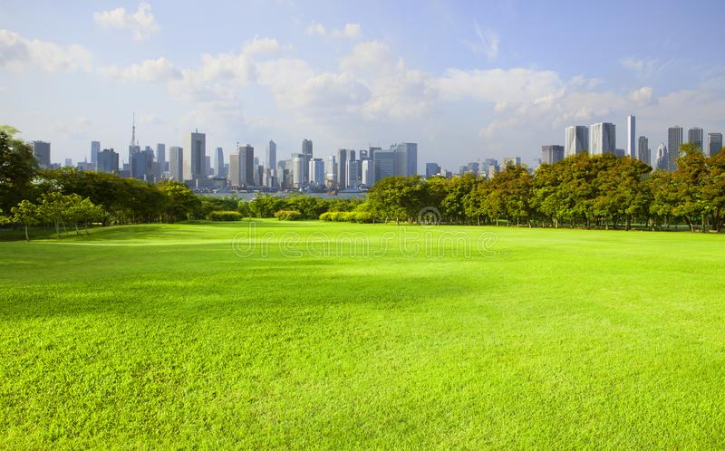 Wide green grass ground of public park against high building in. City stock photo