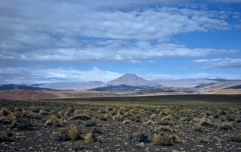 Download Wide Landscape In Bolivia,Bolivia Stock Image - Image: 8649497