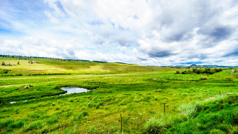 The wide open grasslands and rolling hills of the Nicola Valley stock photo