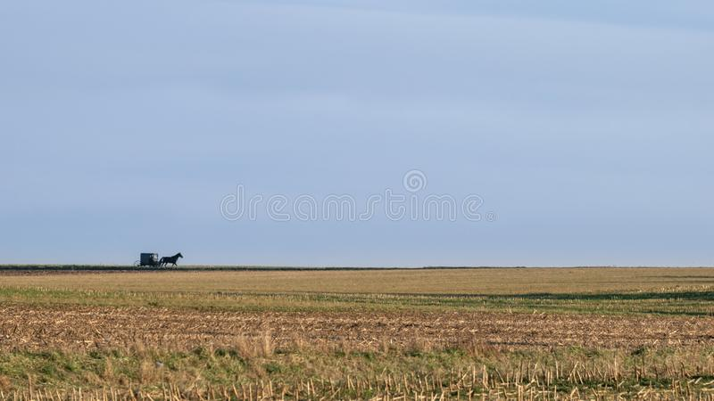 A wide open landscape, fields and horizon, with a horse drawn Amish buggy, Lancaster County, PA stock images