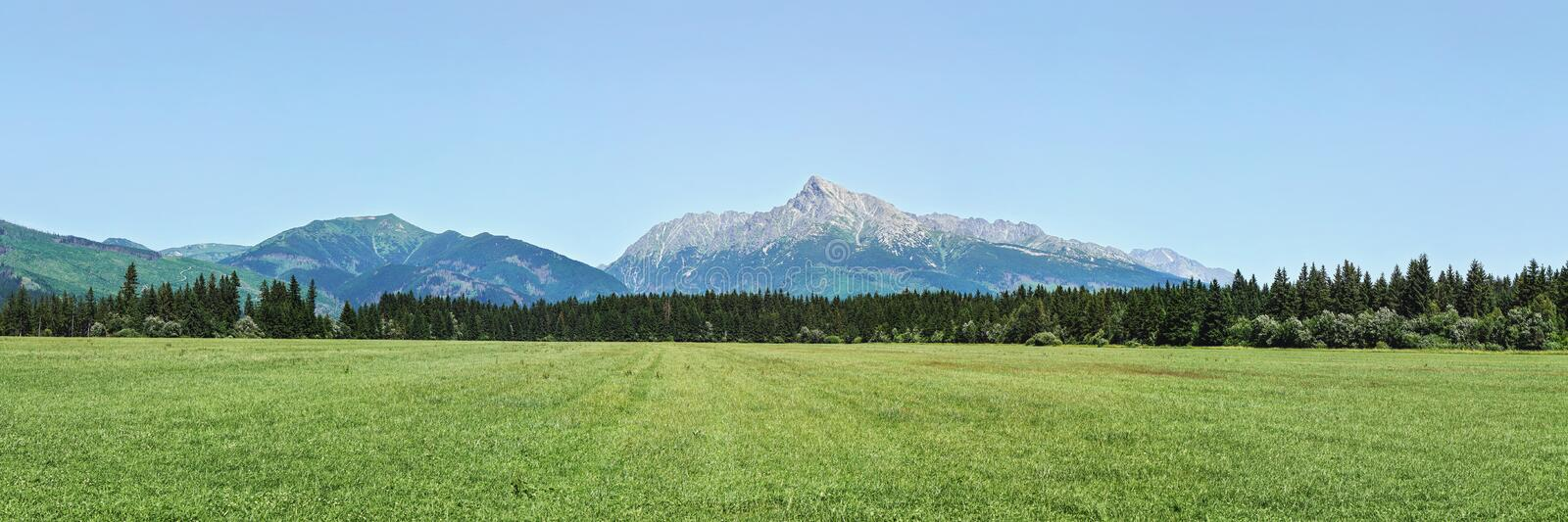 Wide panorama of green meadow with small forest and mount Krivan peak -Slovak symbol - in distance, clear sky above royalty free stock image