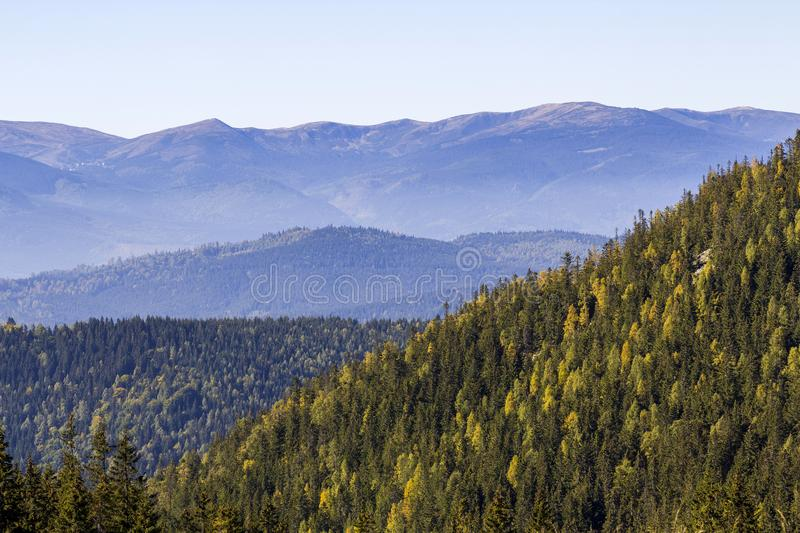 Wide panorama of green mountain hills in sunny clear weather. Carpathian mountains landscape in summer. View of rocky peaks covere stock image