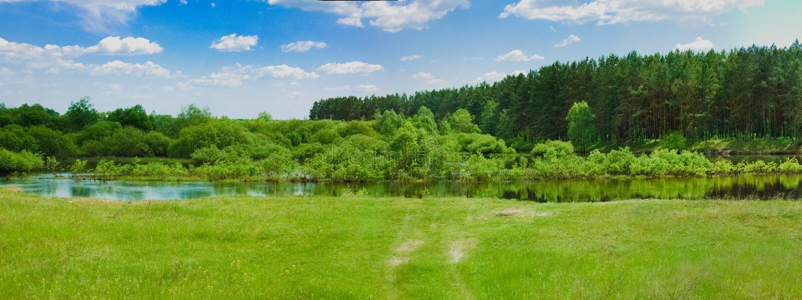Wide Panorama Of A River And The Forest royalty free stock image