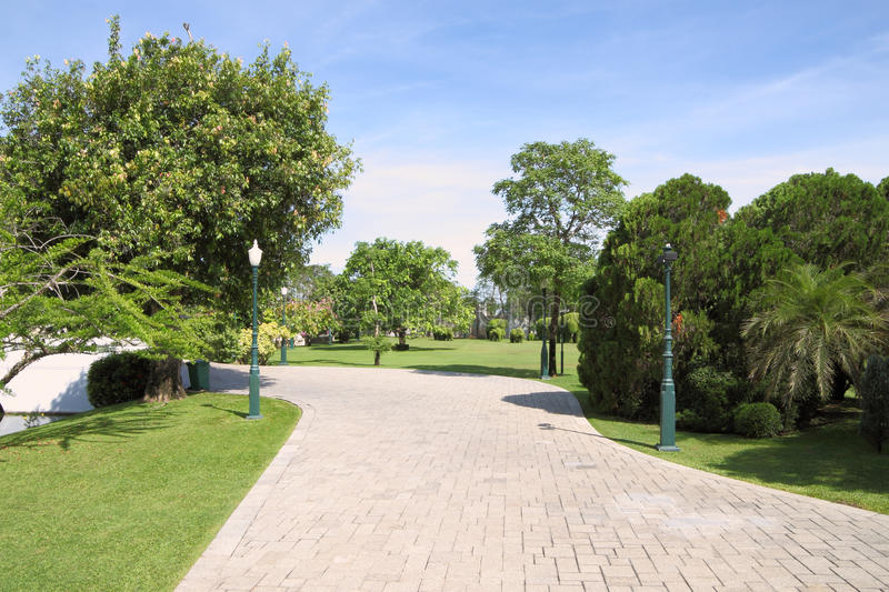 Download Wide path walk stock photo. Image of grass, yard, outdoor - 25173188