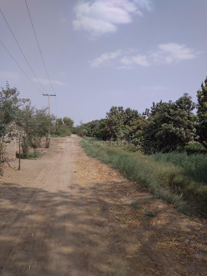 A wide path stock photos