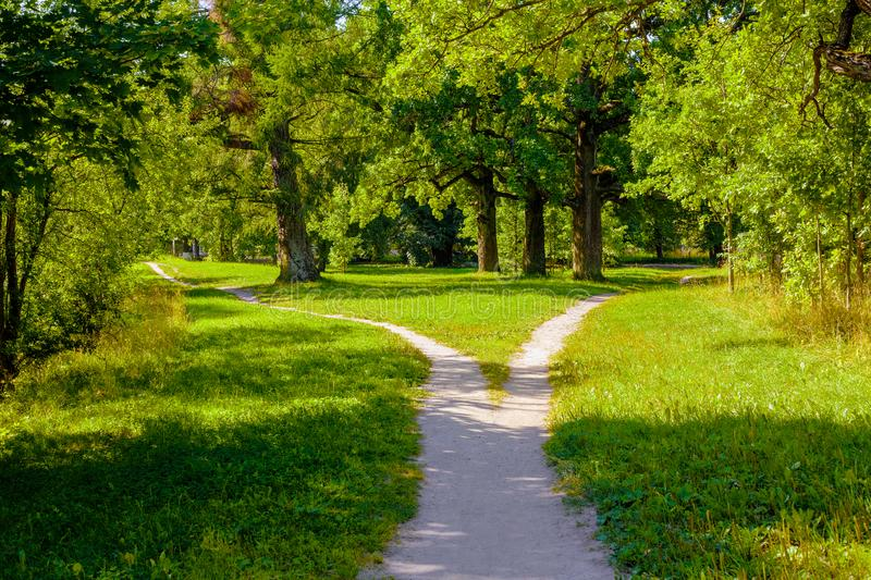 The wide pedestrian track in the park is divided into two, dispersing in different directions. The wide pedestrian track in the park is divided into two royalty free stock image