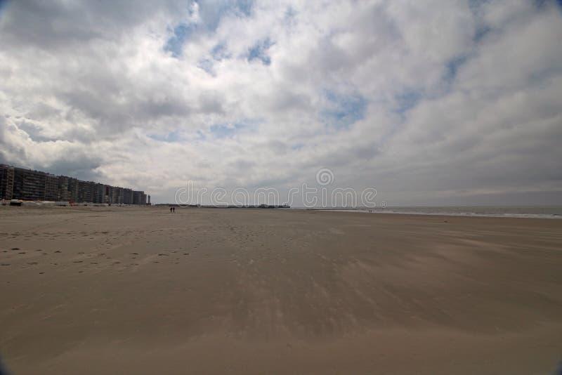 Wide send beach in Belgium, royalty free stock photo