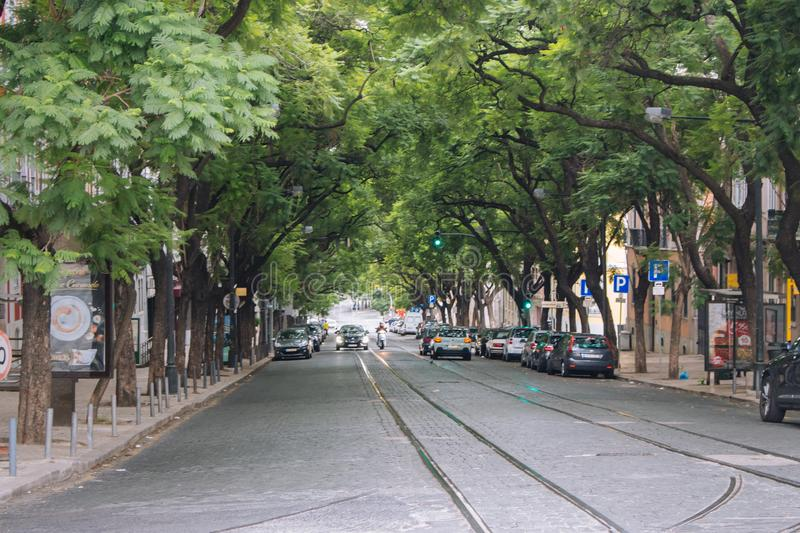 Wide street with tram rails and cars in Lisbon. Huge trees over street. Summer avenue with bus stop and parking cars. stock photography