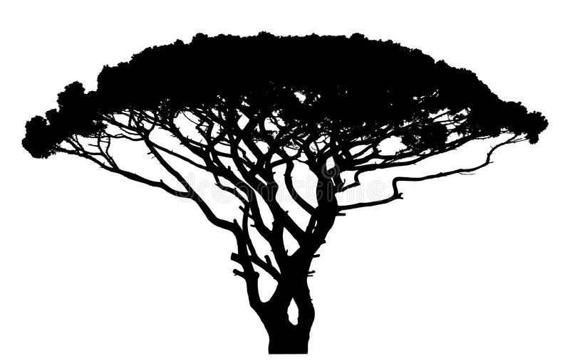 Wide tree silhouette vector illustration