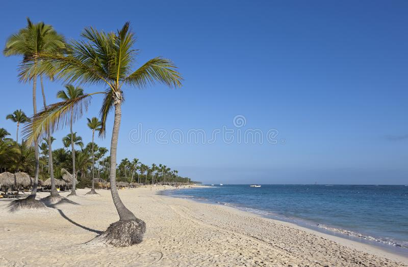 Wide tropical Caribbean beach Dominican Republic royalty free stock photo