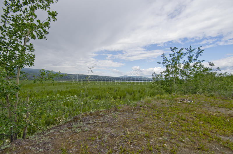 Wide valley vista on the Yukon river stock images