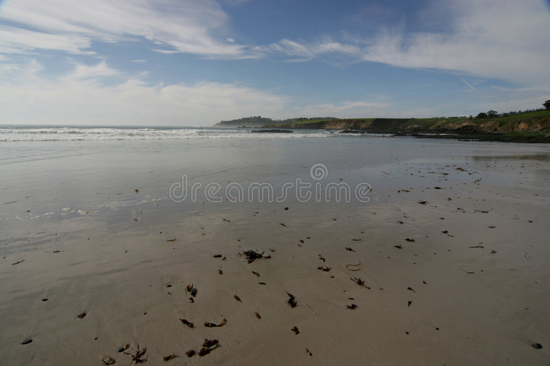 Download Wide view of beach stock photo. Image of path, rocks, natural - 503866