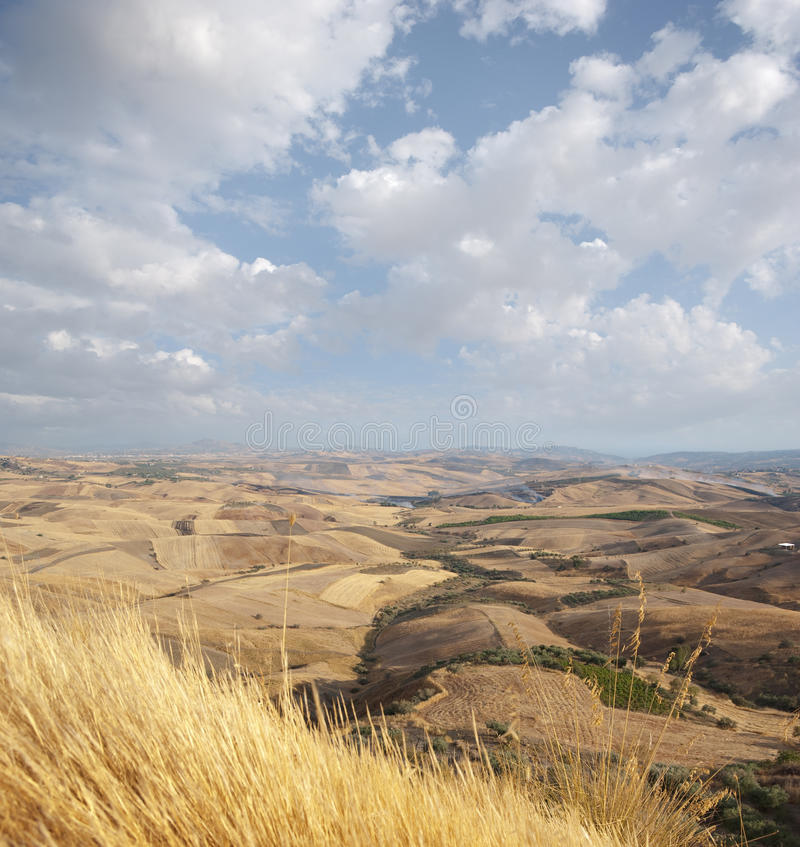 Download Wide View Of The Sicilian Hinterland Stock Photo - Image: 13580578