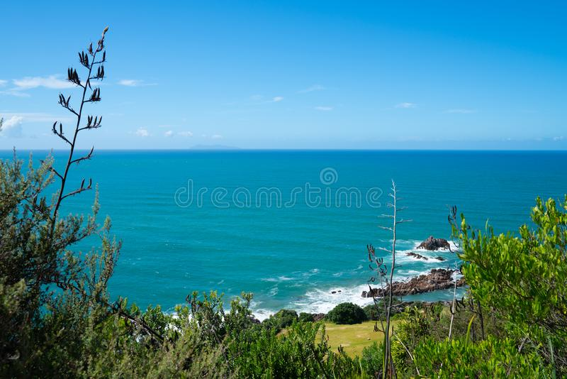 Wide view of South Pacific from slope of Mount Maunganui Tauranga New Zealand. Wide view of South Pacific from slope of Mount Maunganui to Mayor Island on royalty free stock photos