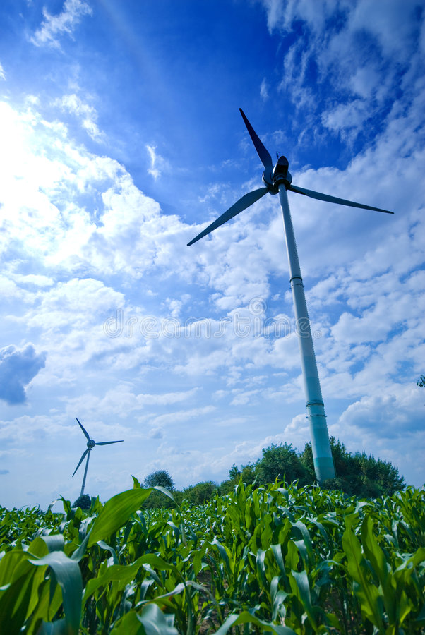 Wide wind. Clean energy white wind turbine in corn field royalty free stock photography