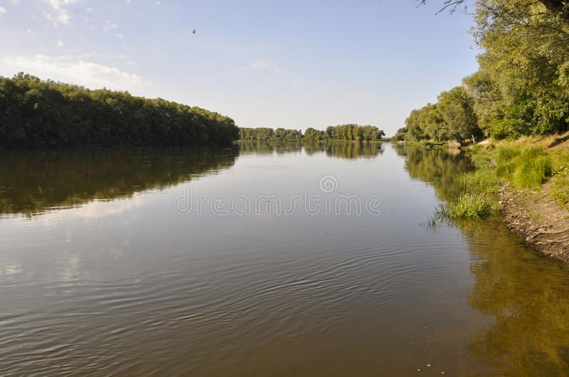 Wide yellow river is slow flowing. Early autumn. Sunny weather and brightgreen trees on the banks fron the both sides royalty free stock photos