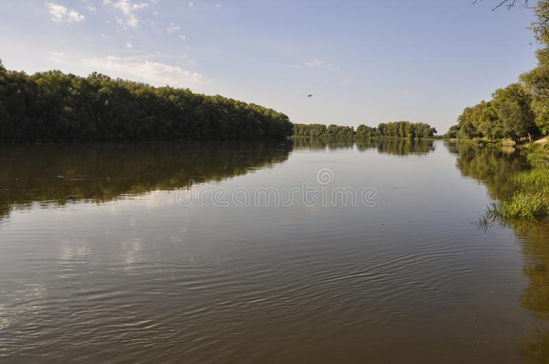 Wide yellow river is slow flowing. Early autumn. Sunny weather and brightgreen trees on the banks fron the both sides royalty free stock images