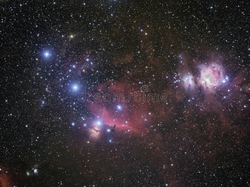 Widefield Orion Complex fotografia stock