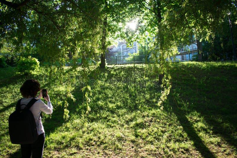 Wideshot av kvinnan som tar en snpashot av solnedg?ngen parkerar in royaltyfri foto