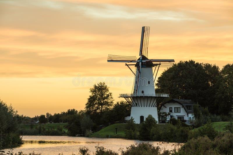 Widmill in Deil royalty-vrije stock afbeelding