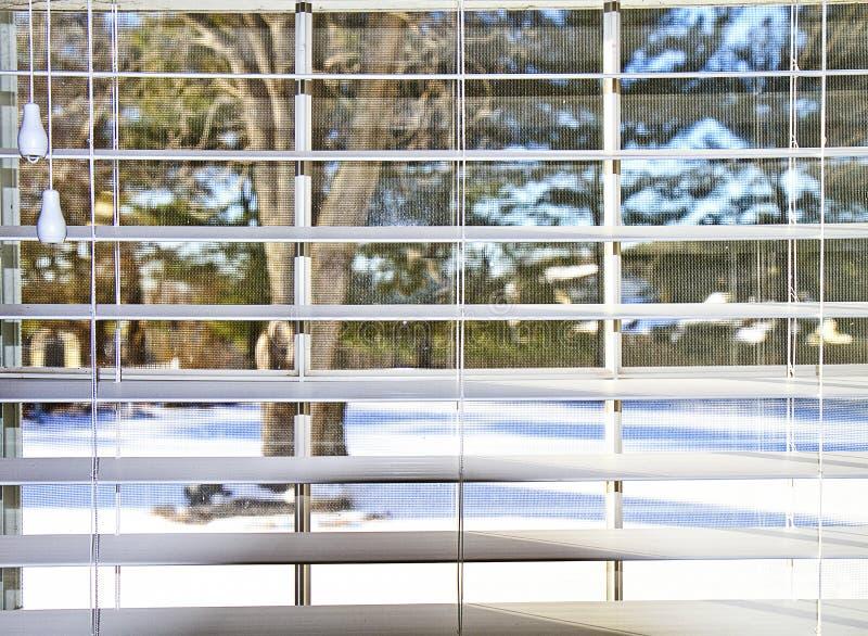Widok Śnieżny jard przez stor zdjęcie royalty free