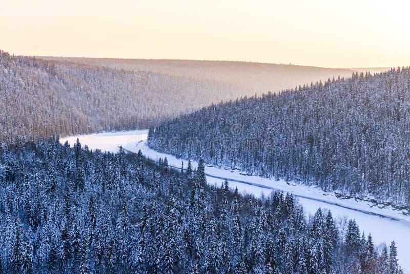 Widok śnieżysty zima las w czasu zmierzchu zdjęcie royalty free