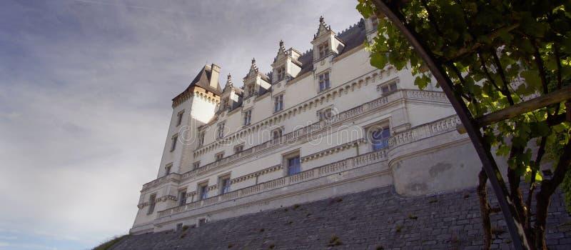 Widok Średniowieczny kasztel Pau, Pyrenees Atlantiques, Francja fotografia royalty free