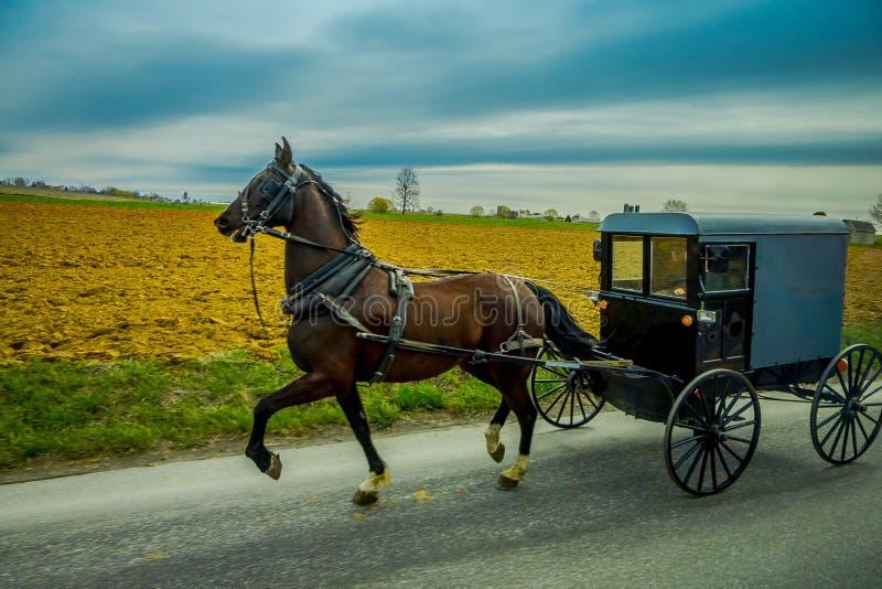 Widok Amish powozik na drodze z koniem w wschodnim Pennsylwania fotografia royalty free
