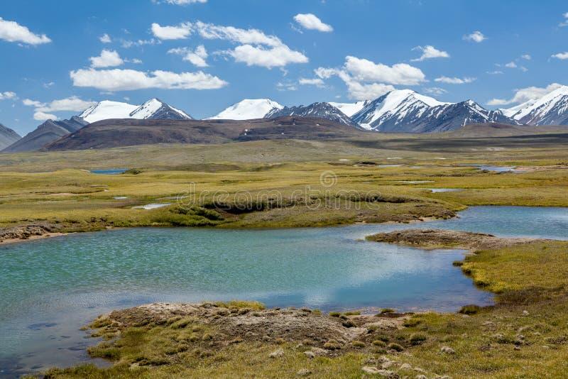 Widok Arabel dolina. Tien shan, Kirghizia zdjęcia royalty free