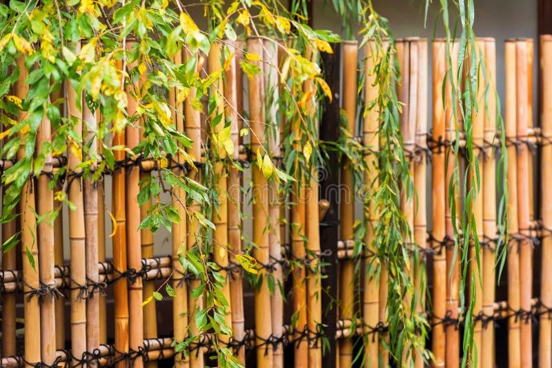 Widok bambusowy ogrodzenie w Kyoto, Japonia Zakończenie fotografia royalty free